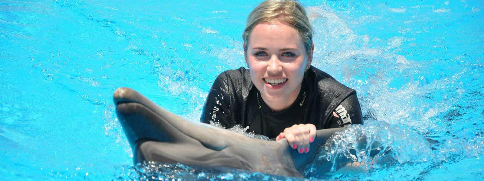 Swimming with Dolphins Makadi